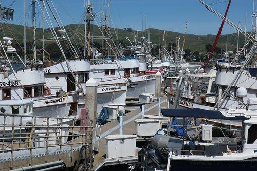 fishing  boats  marine