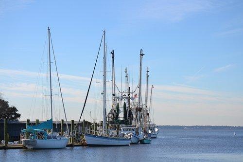 fishing  commercial fishing  shem creek