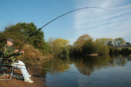 fishing angling carp