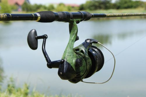 fishing reel pond