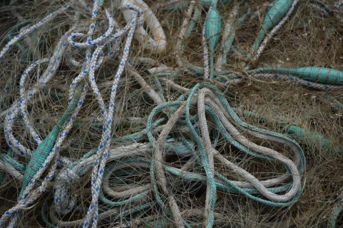fishing networks standard