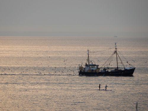 fishing boat scheveningen fish
