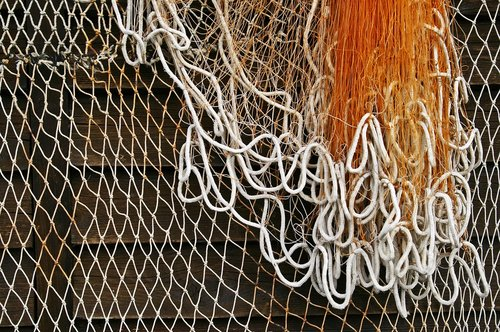 fishing net  fishing  web