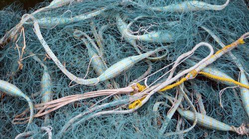 fishing net fish work