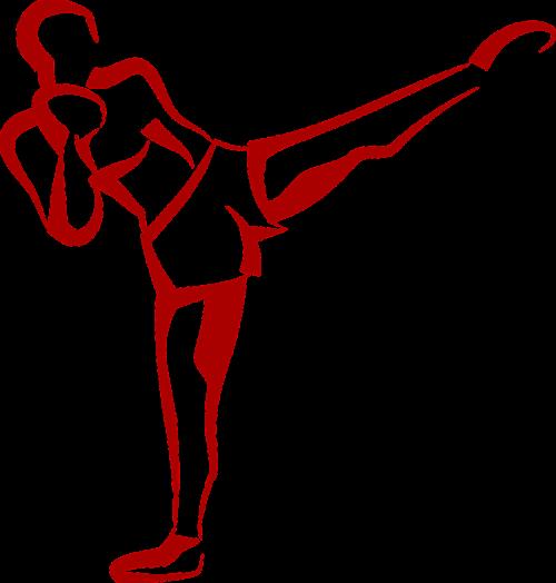 fitness kick kick boxer