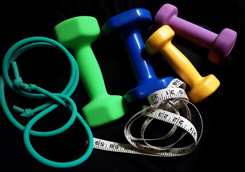 fitness  exercise  weight loss