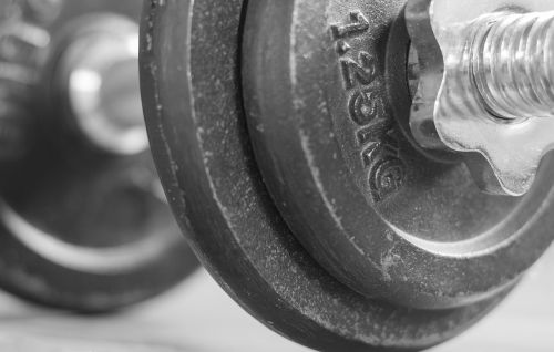 fitness studio dumbbell weights