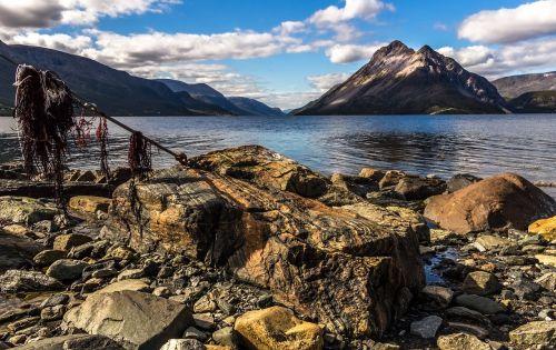 fjordas,kalnas,jūra,Norvegija,pobūdis,kraštovaizdis,vanduo,Šiaurės Norvegija,Peržiūros,lauke,vasara,dangus,norvegų,landcpe,norvegų fjordas,kranto,atgalinė pakuotė,langfjorden,finnmark
