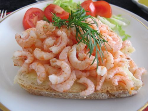 fjord shrimp spring peeled