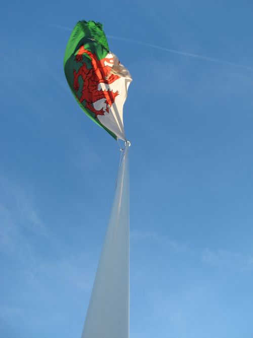 flag wales red dragon