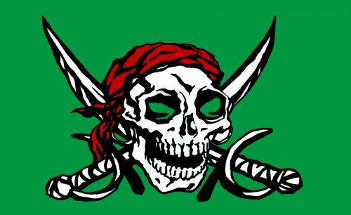 flag skull and crossbones bone