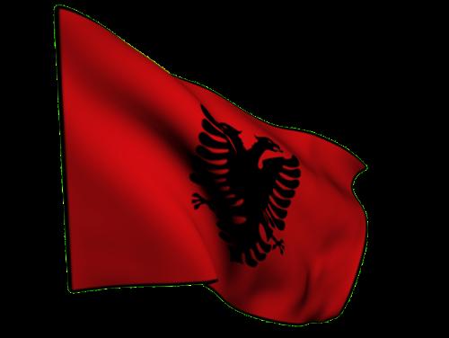 flag albania aguila