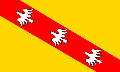 flag lorraine france