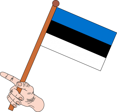 flag the flag of estonia estonia