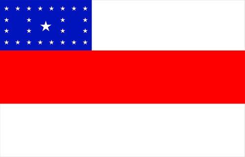 flag  state  amazonas