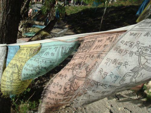 vėliava,budizmas,budistinis,šventas,malda,šventas,Nepalas,tradicinis,dvasinis,vėliavos
