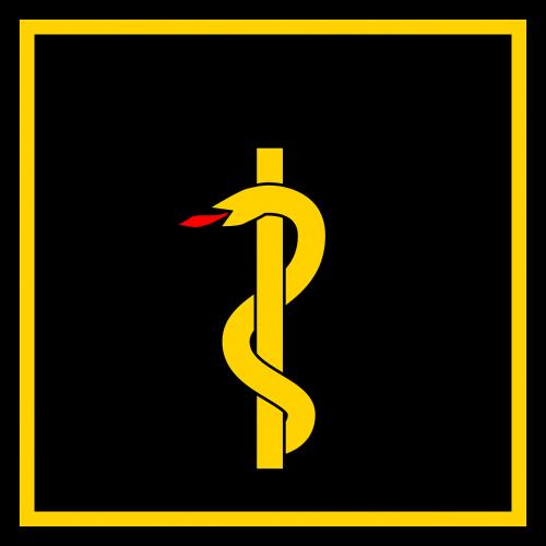 flag health snake