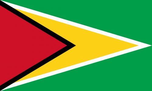 flag guyana the golden arrow