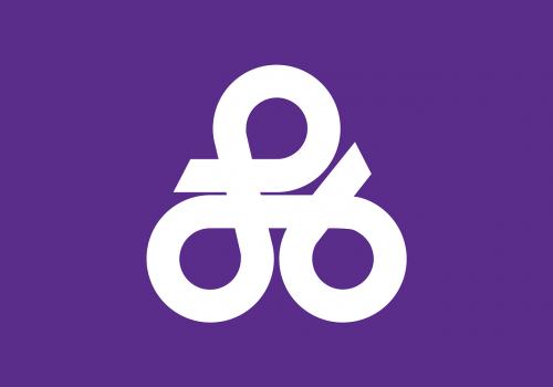 flag okinawa japan