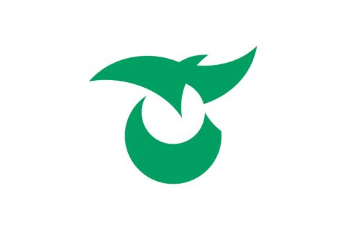 flag saku nagano