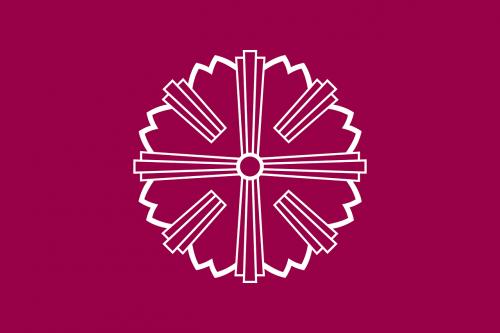 flag star round