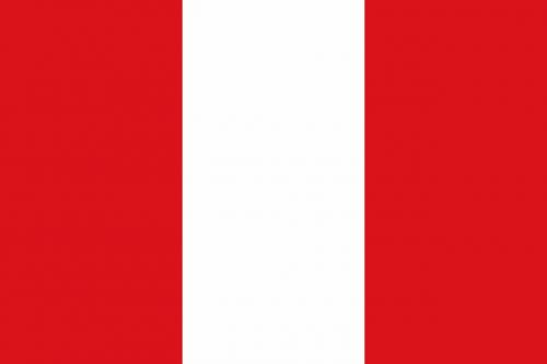 flag mons city