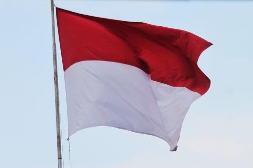 vėliava,Indonezijos vėliava,raudona ir balta vėliava,aflutter,tėvynė,indonesian,purwokerto,banyumas