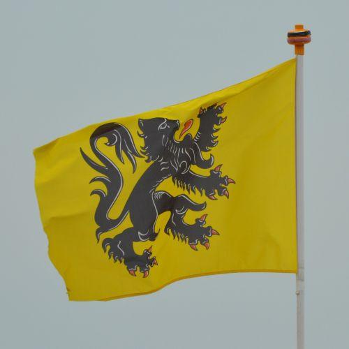 flag flemish lion flanders