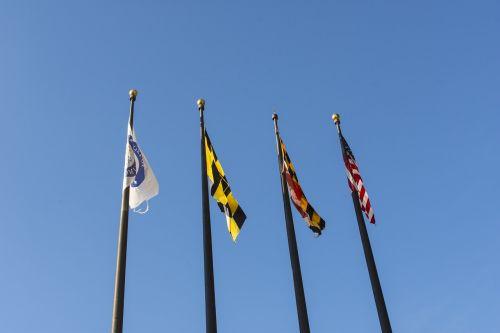 vėliavos,polių,Maryland,valstybė