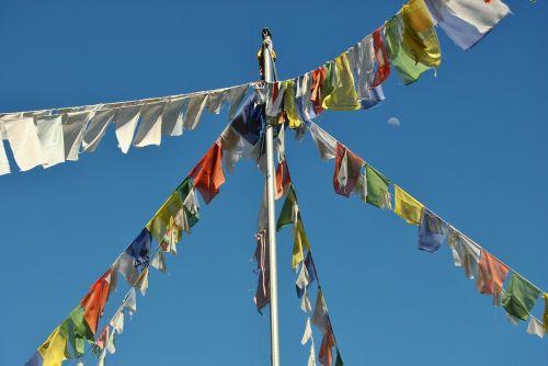 flags buddhism flag