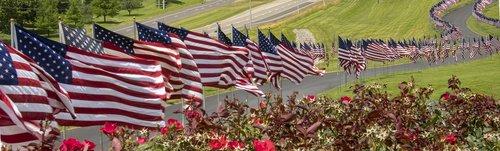 flags  american  america