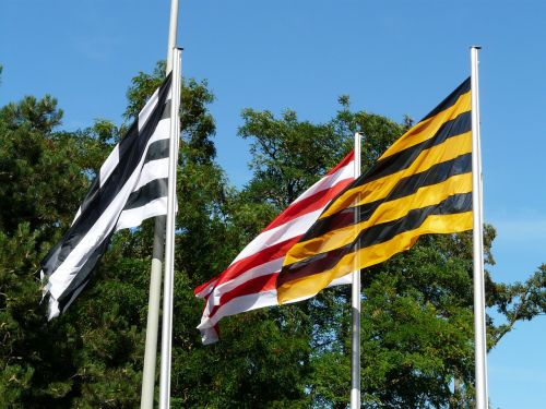 flags blow colorful