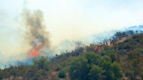 Kalifornija, sausra, sausas, Ugnis, gaisrininkai, liepsna, miškas namas, ugnis, šiluma, karštas, oranžinė, rėkti, šiltas, dykuma, Laukinė ugnis, ugnis sprogo šalia gaisrininkų
