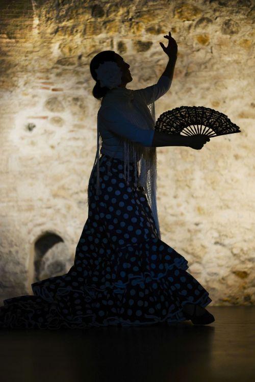 flamenco sevilla dan