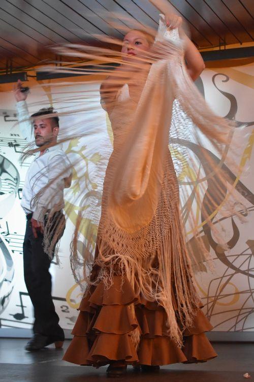 flamenco dancing clothing