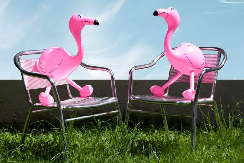 flamingo inflatable pink