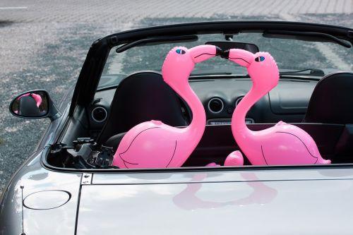 flamingo inflatable pink