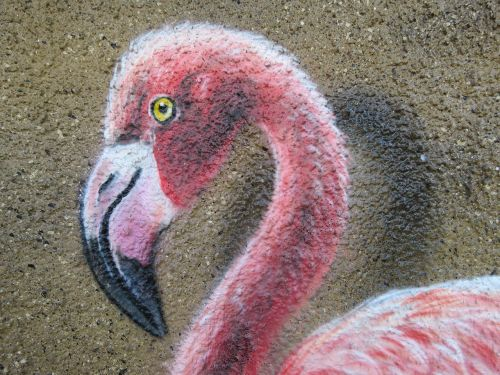 flamingo wall art wall
