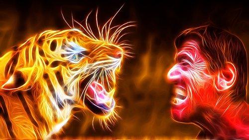 flare-up  tiger  man