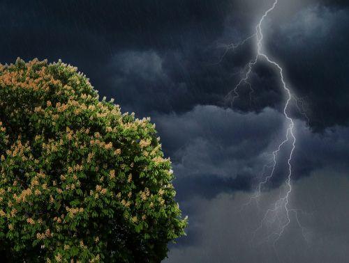 flash thunderstorm thunder