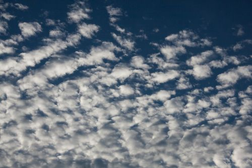 fleecy clouds clouds blue