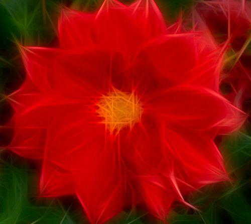 Stylized Flower # 38