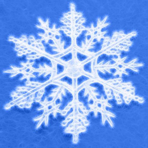Snowflake (11)