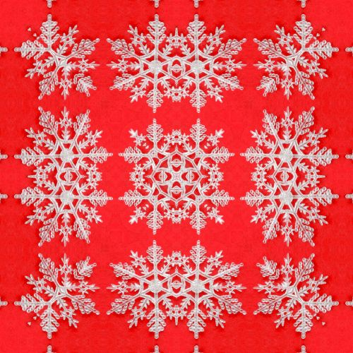 Snowflake (8)