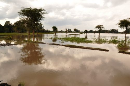 flood flooding wet