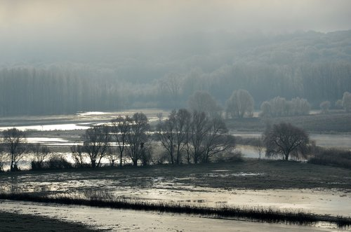 flood  winter  landscape
