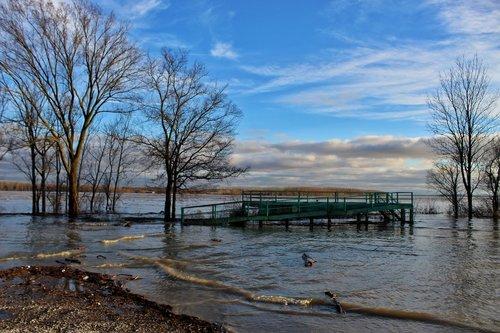 flood  mississippi river  levee