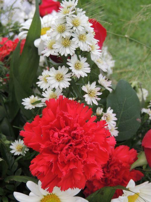 flora floral arrangement arrangement