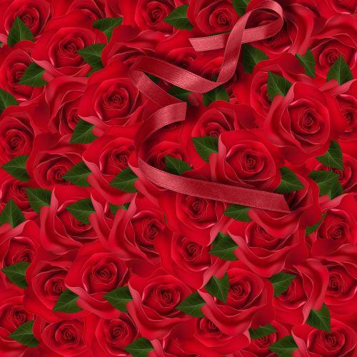 floral rosa flower