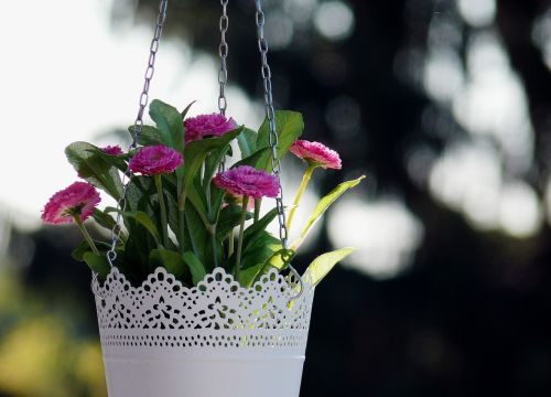 floral flowers hanging basket